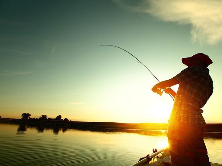 Connaitre les caractéristiques des poissons pour augmenter vos prises