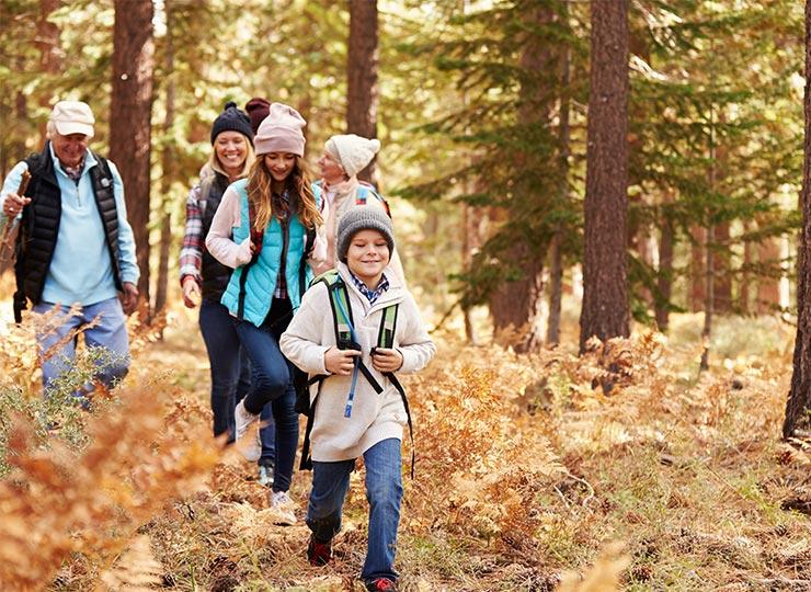 La randonnée en forêt, l'activité anti Covid par excellence!