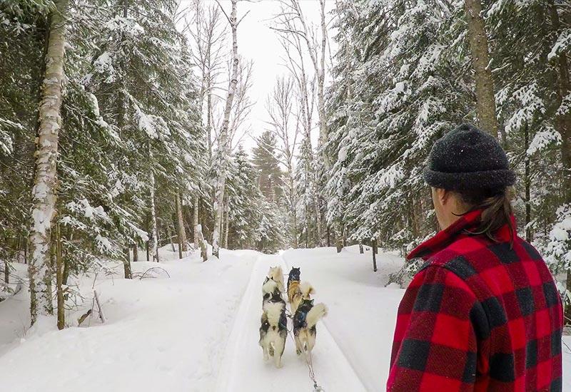 Pourvoirie Mekoos - Journée unique en traineau à chien